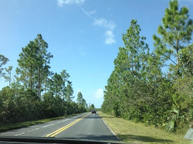 アメリカ合衆国、郊外の道路